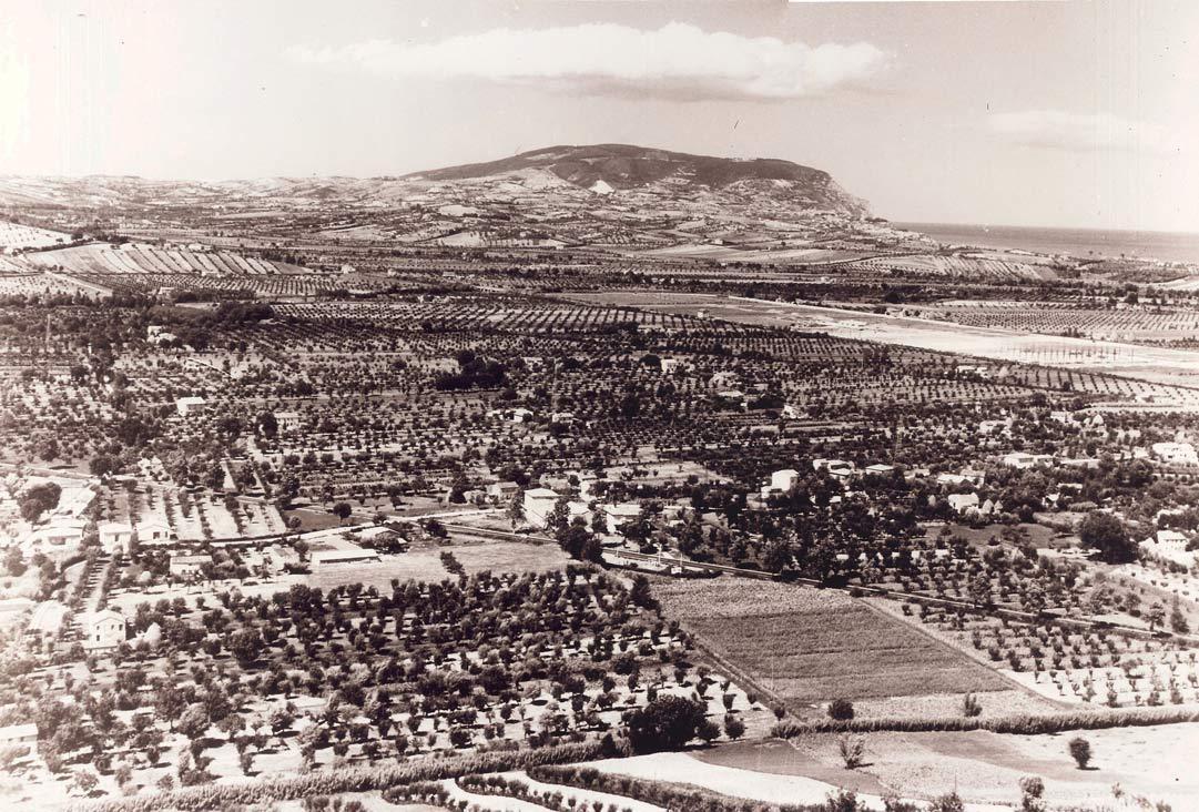 area della Battaglia di Castelfidardo